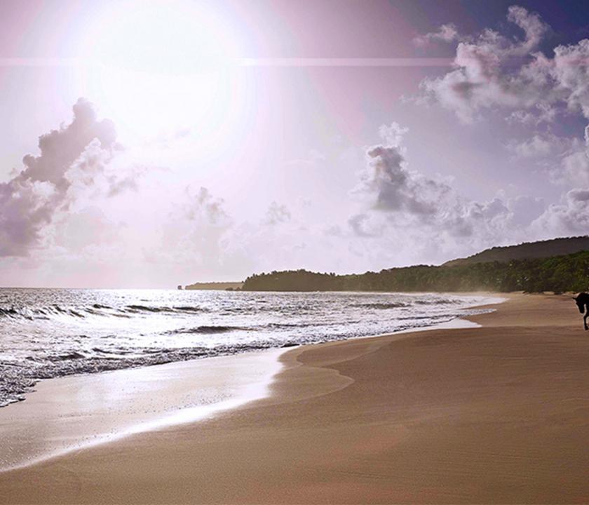 Amanera - part (Dominikai utazások)