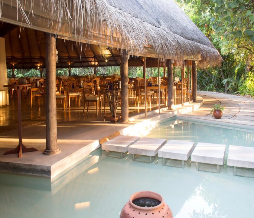 Coco Palm Dhuni Kolhu (Maldív-szigeteki utazások)