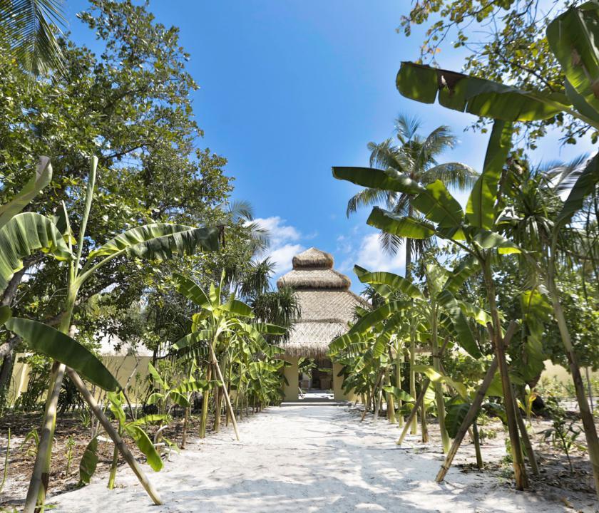 Emerald Maldives Resort & Spa - a spa bejárata (Maldív-szigeteki utazások)
