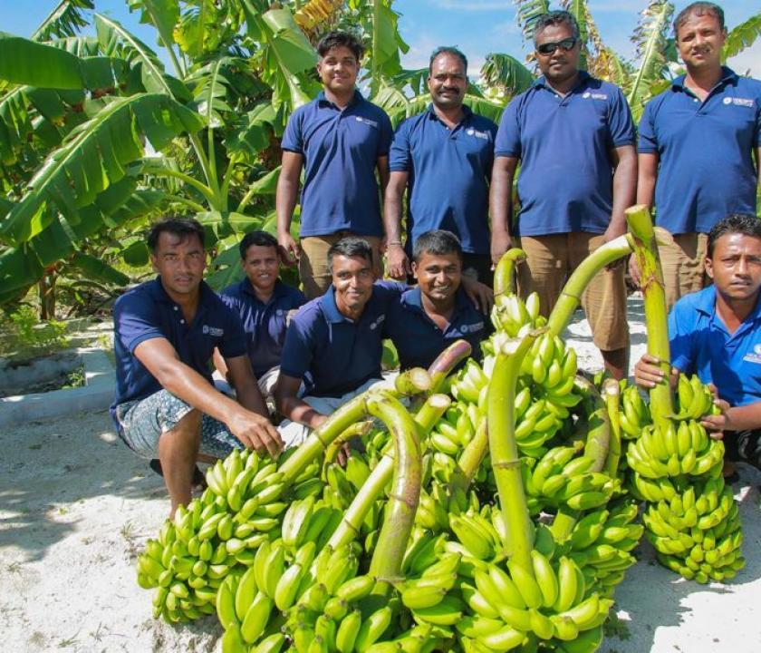 Hideaway Beach Resort & Spa (Maldív-szigeteki utazások)