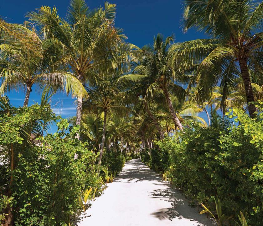 OBLU SELECT at Sangeli by Atmosphere - séta a kertben (Maldív-szigeteki utazások)