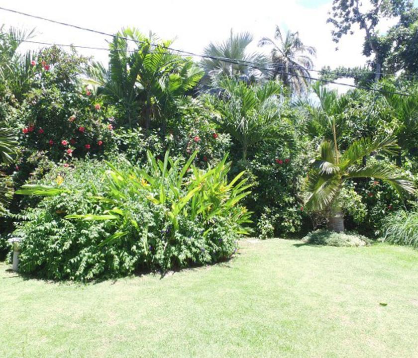 Crown Beach - kert (Seychelle szigeteki utazások)