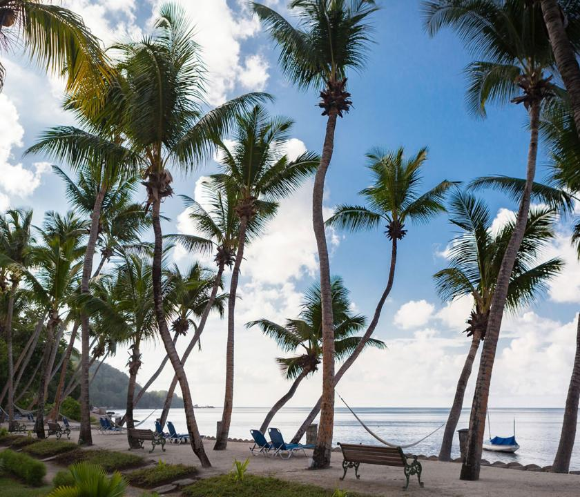 Coco de Mer Hotel & Black Parrot Suites - parti sétány (Seychelle szigeteki utazások)