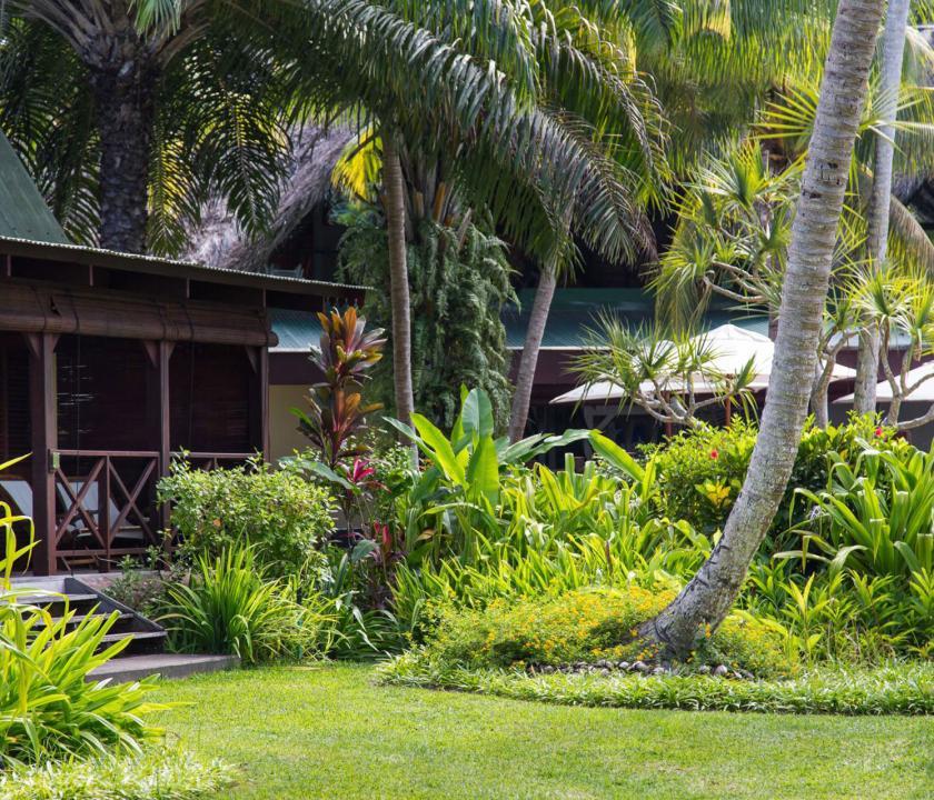 Paradise Sun Hotel - kert (Seychelle szigeteki utazások)