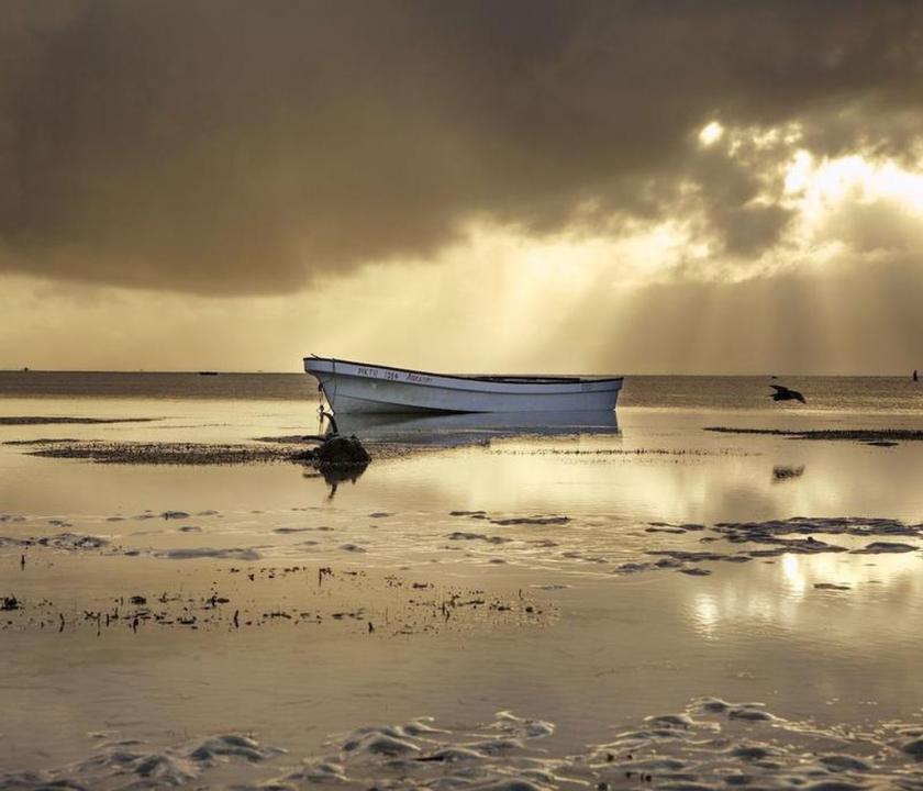 The Island Pongwe Exclusive Resort Zanzibar (Zanzibári - Tanzániai utazások)