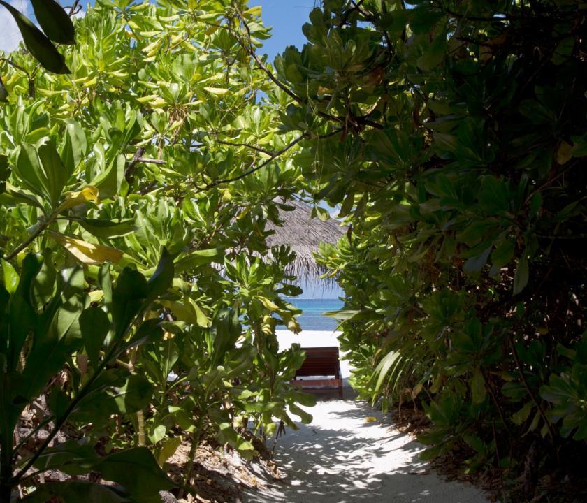 Coco Palm Dhuni Kolhu / Sunset Beach Villa (Maldív-szigeteki utazások)